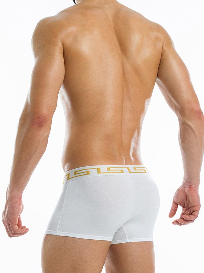 Ropa interior masculina b xer blanco modus vivendi oferta for Ropa interior sexi masculina