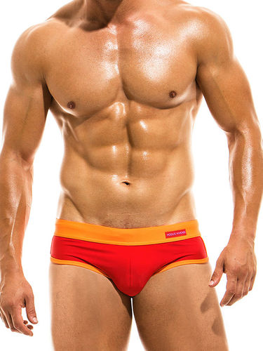 Modus Vivendi Brief