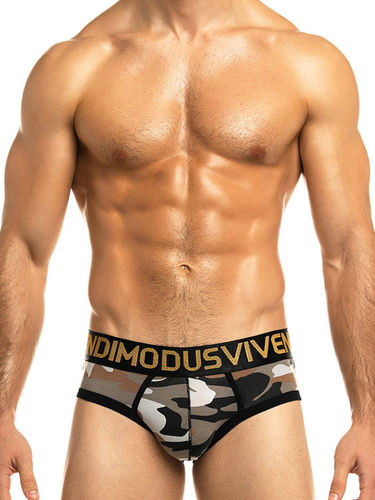 Modus Vivendi Military Brief
